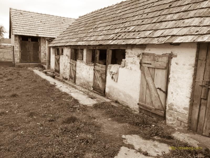 Parasztház hátsó udvara