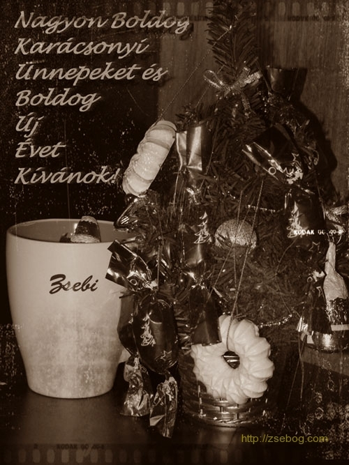 BKBUEK_2009